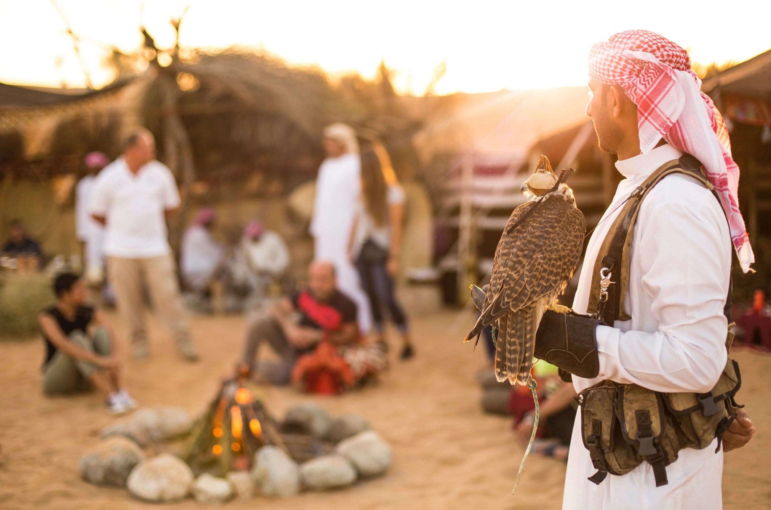 Best of Arabian Nights Tours