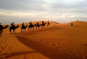 Is Dubai Desert Safari Open