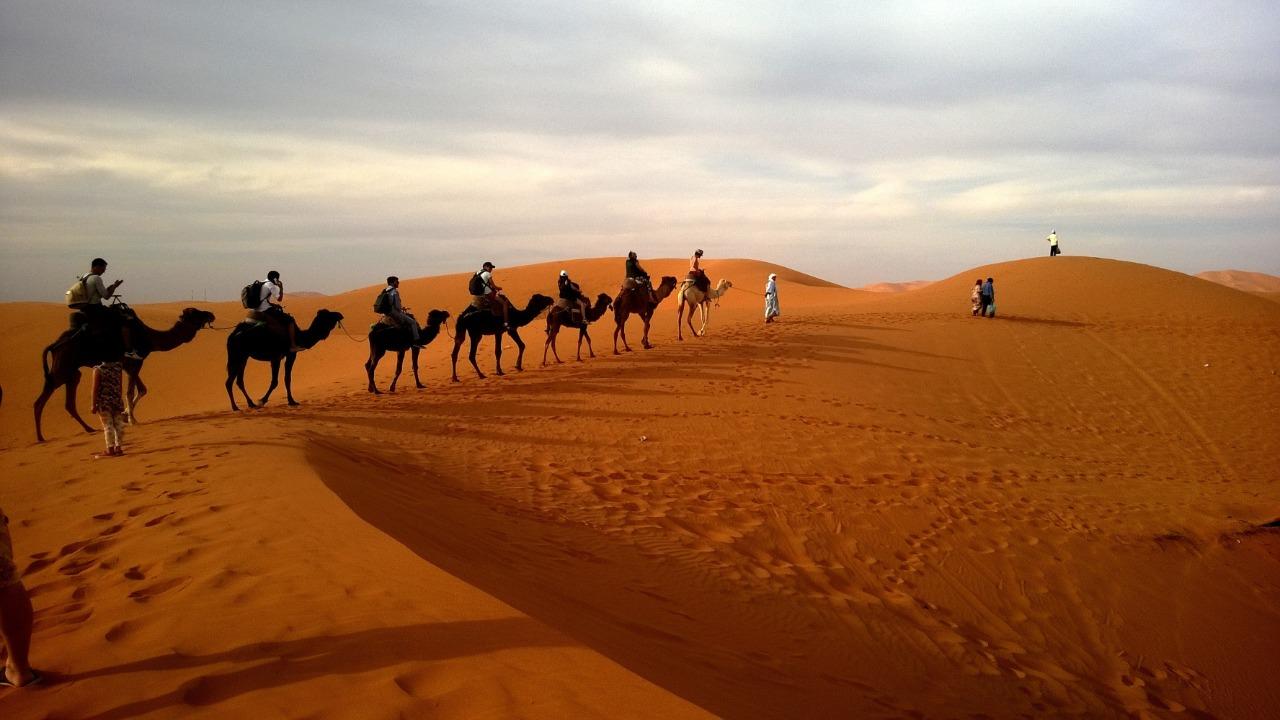 Is Dubai Desert Safari Open