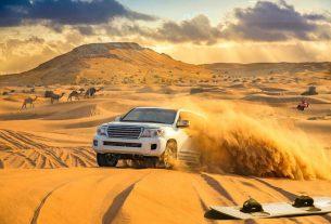 Sand Dune Safaris